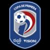 Division Profesional